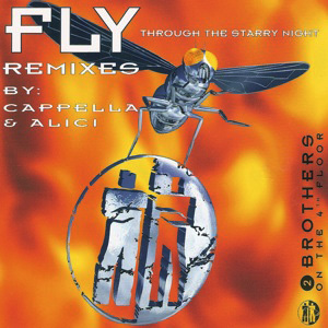 FLY REMIXES